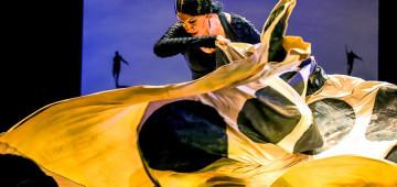 Puerto_Flamenco
